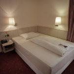 Einzelzimmer-mit-Parkblick-in-Hattersheim-am-Main